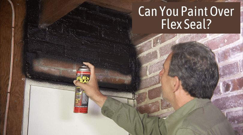 Can You Paint Over Flex Seal